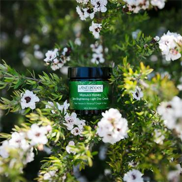Antipodes Manuka Honey Skin Brightening Light Day Cream 60ml