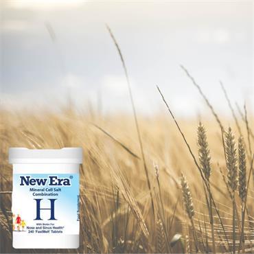 New Era H Hayfever 240s