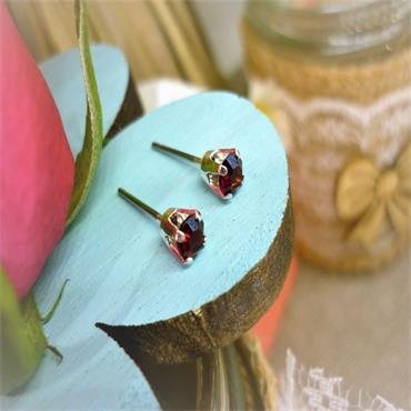 Earsense January Birthstone Stud Earrings