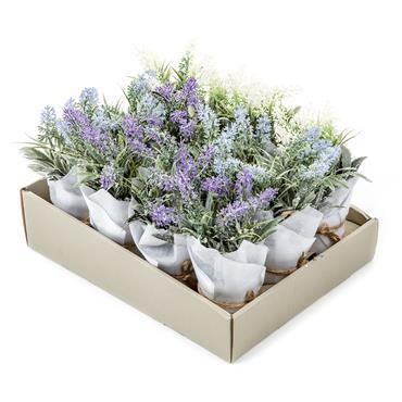 Premier 22cm Frosted Lavender Pot| DF175264