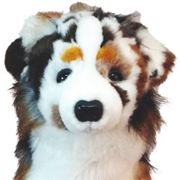 Daphne's Animal Headcover  Australian Shepard