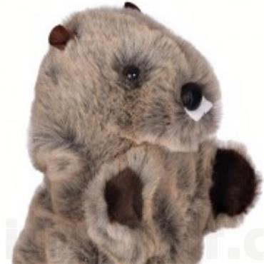 Daphne's Animal Headcover  Beaver