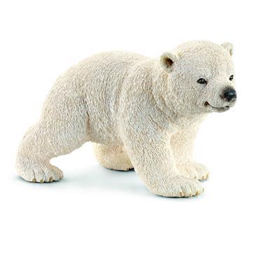 Polar bear cub, walking