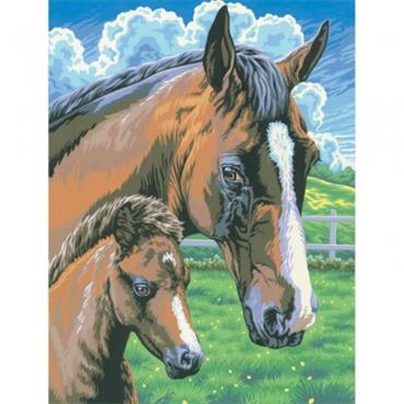 KSG Paint By Numbers MED - HORSE + FOAL