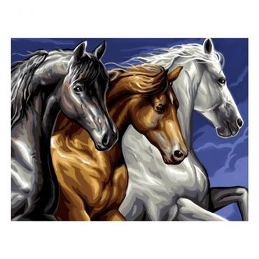 ksg Paint By Numbers - Wild Horses Large