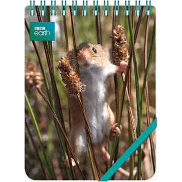 Reporter Notepads - Harvest Mouse