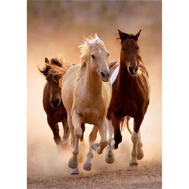 HQC 1000pc Puzzle - Running Horses