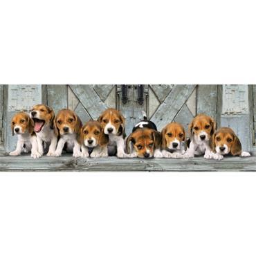 HQC 1000pc Panorama Puzzle - Beagles