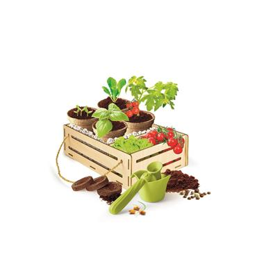 Clementoni Science PFF - Gardening Set