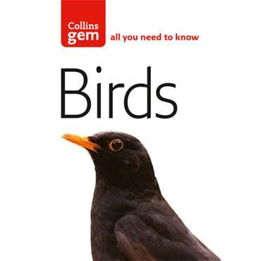COLLINS GEM BIRD