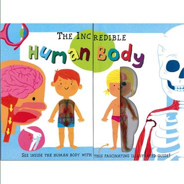 MY FIRST HUMAN BODY BOOK - NEW VERSION
