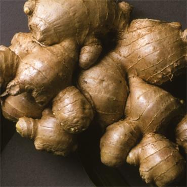 Atlantic Aromatic Ginger Oil 5ml