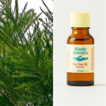 Atlantic Aromatics Organic Tea Tree Oil 20ml