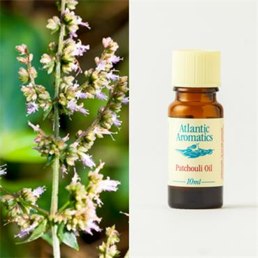 Atlantic Aromatics Patchouli Oil 10ml