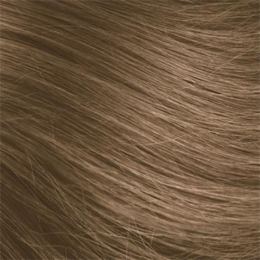 8N Wheat Germ Blonde