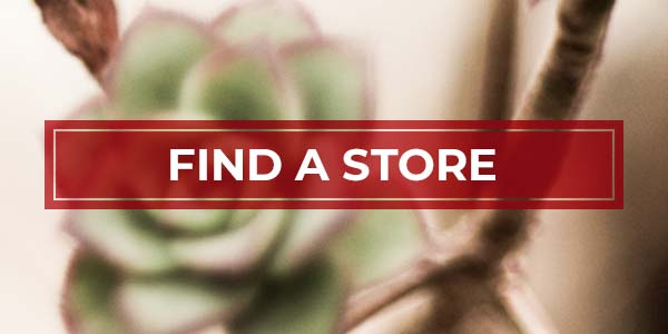 Find out where and when you can shop at Nourish, with locations and opening times for all of our stores