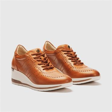 PITILLOS WOMENS LOW WEDGE LACE TRAINER - BROWN LEATHER