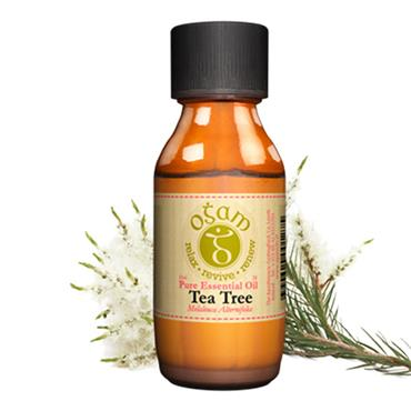 OGAM TEA TREE ESSENTIAL OIL 10ML