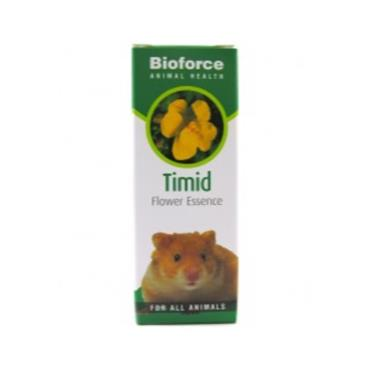 Bioforce Animal Health Flower Essence Timid 30ml