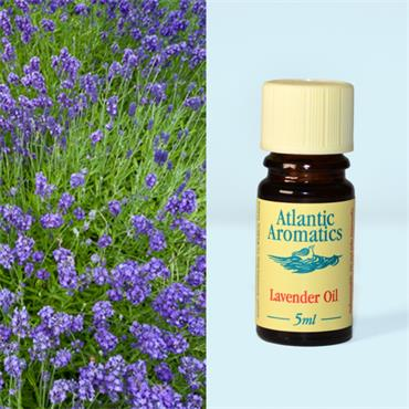 Atlantic Aromatic Lavender Oil 5ml