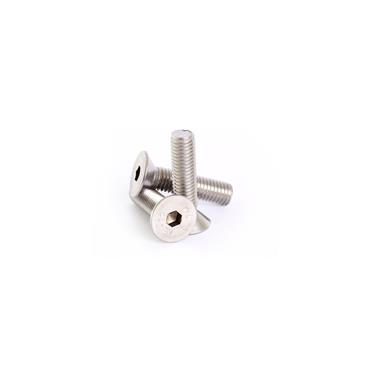 Stainless Steel Socket Countersunk Screw DIN799 A2