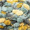 Rico Pompon Prints #36 Mustard Teal   ***