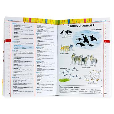 Collins Childrens Thesaurus - Learn With Words