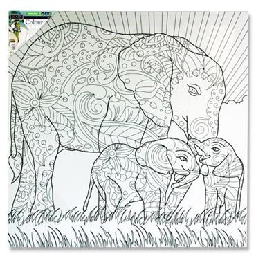 Icon 500x500mm Colour My Canvas - Elephant