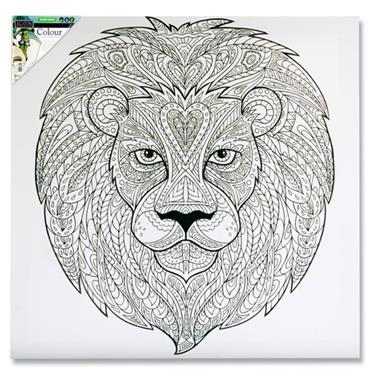 Icon 500x500mm Colour My Canvas - Lion