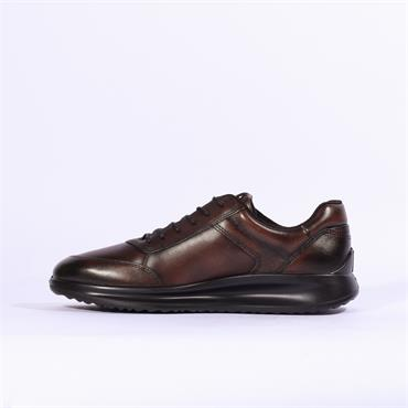 Ecco Aquet Laced - Brown