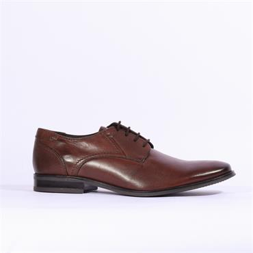 Dubarry Drago - Brown
