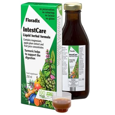 FLORADIX Intestcare Liquid Formula 250ml