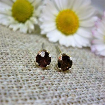 Earsense February Birthstone Stud Earrings