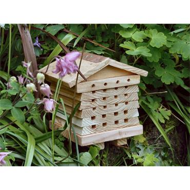 BEE HIVE INTERACTIVE