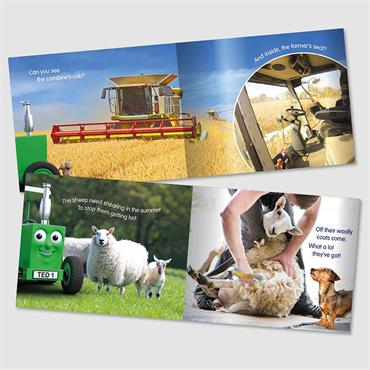 TRACTOR TED SUMMERS DAY STORY BOOK