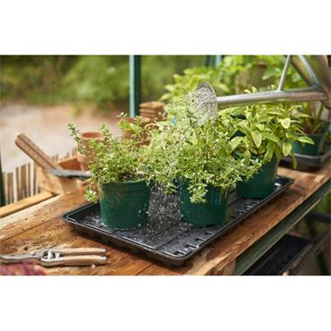 WATERING TRAY 2 PACK