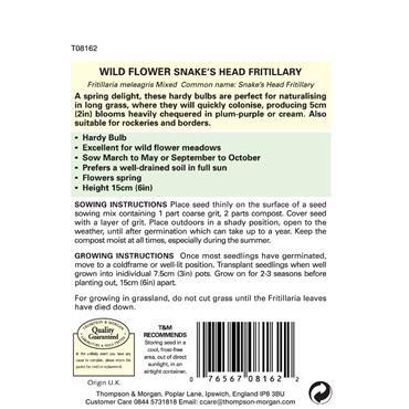 WILD FLOWER SNAKES HEAD FRITILLARIA