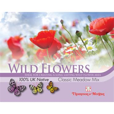 WILD FLOWER CLASSIC MEADOW MIXED