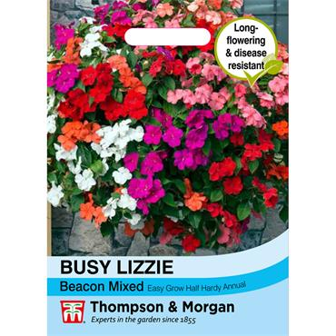 BUSY LIZZIE BEACON MIXED