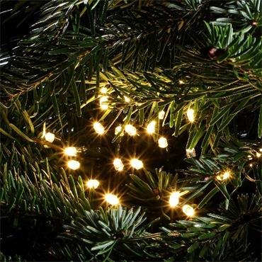 NOMA WARM WHITE MULTIFUNCTION STRING LIGHTS - GREEN CABLE
