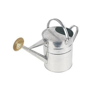 Galvanised Watering Can 9 Litre | 0287-28