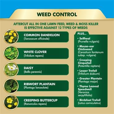 Westland Aftercut All in One Lawn Weed Feed and Moss Killer 400m2 | 20400493
