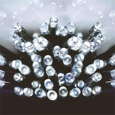 Premier 50 Light Battery LED Lights with Timer - White | LB112382W