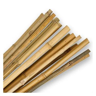 Bamboo Canes 180cm 10 Pack