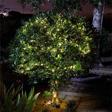 Smart Garden Firefly String Lights 50 Warm White LED