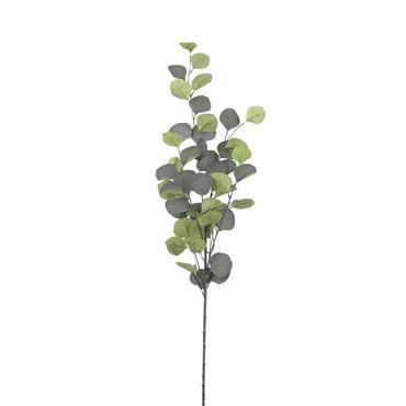 Edelman Eucalyptus Green