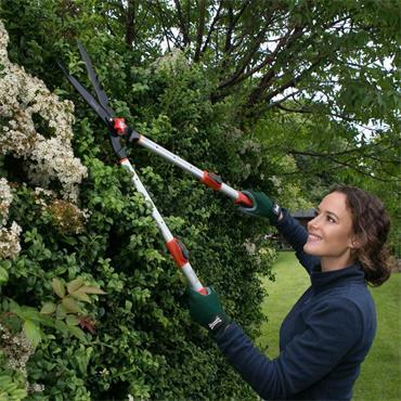 Wilkinson Sword Telescopic Hedge Shears