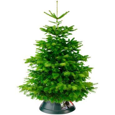 Nordman 39cm Christmas Tree Stand