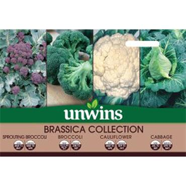 Unwins Brassica Collection Pack Seeds