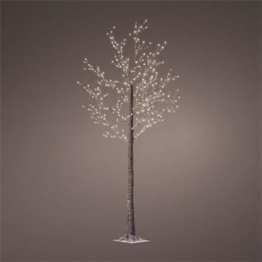 1.8m Birch Microwire Brown Outdoor Tree Cool white